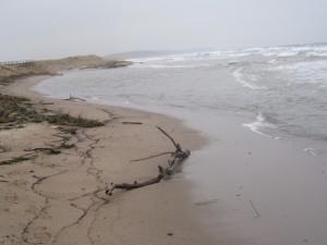Utlopp i havet