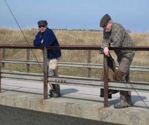 På spaning efter fisk
