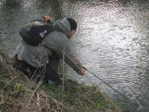 Flitig fiskare